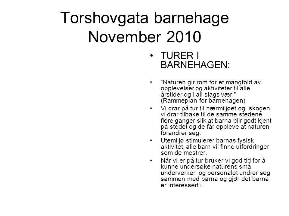 Torshovgata barnehage November 2010