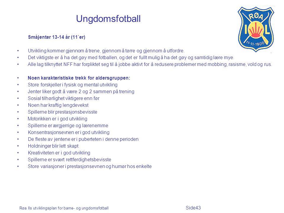 Ungdomsfotball Småjenter 13-14 år (11`er)