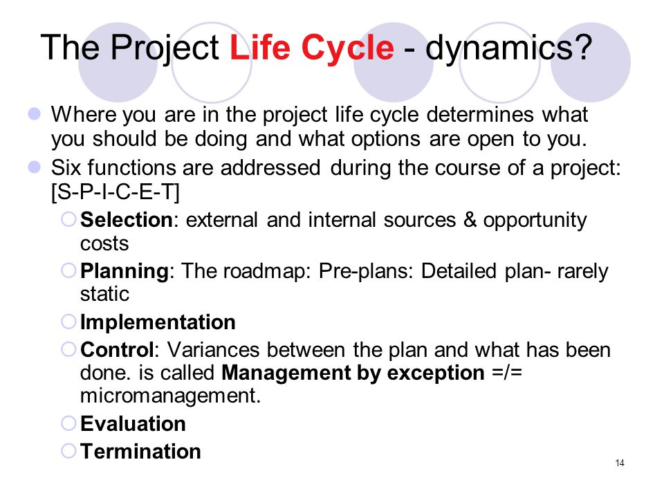 The Project Life Cycle - dynamics