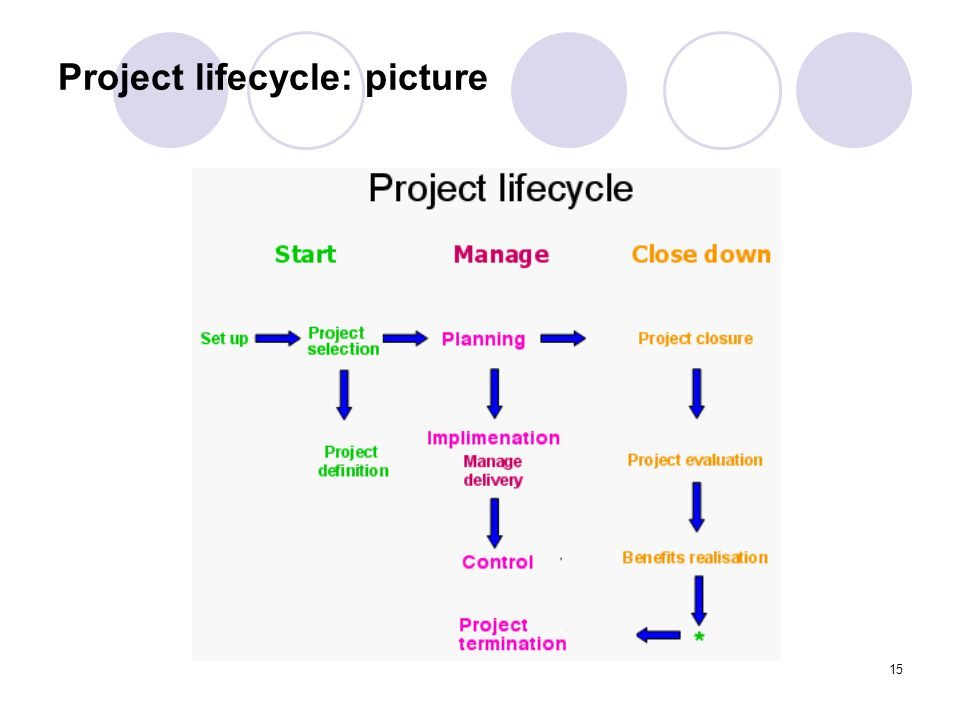 Project lifecycle: picture