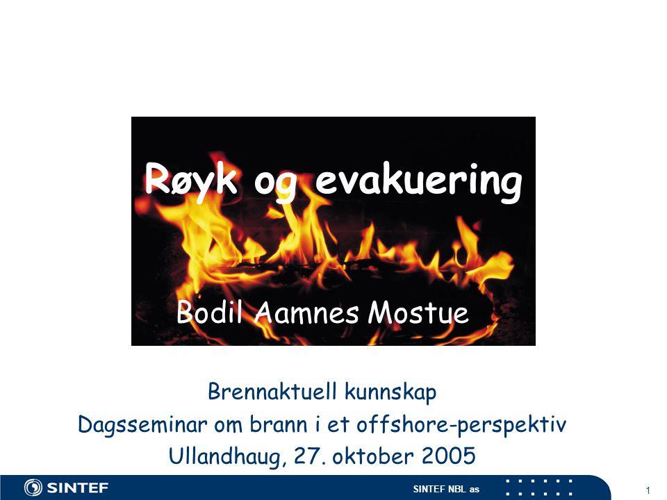 Røyk og evakuering Bodil Aamnes Mostue Brennaktuell kunnskap