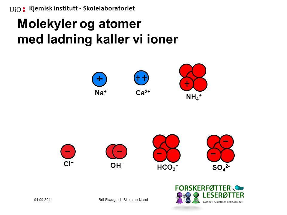 Molekyler og atomer med ladning kaller vi ioner