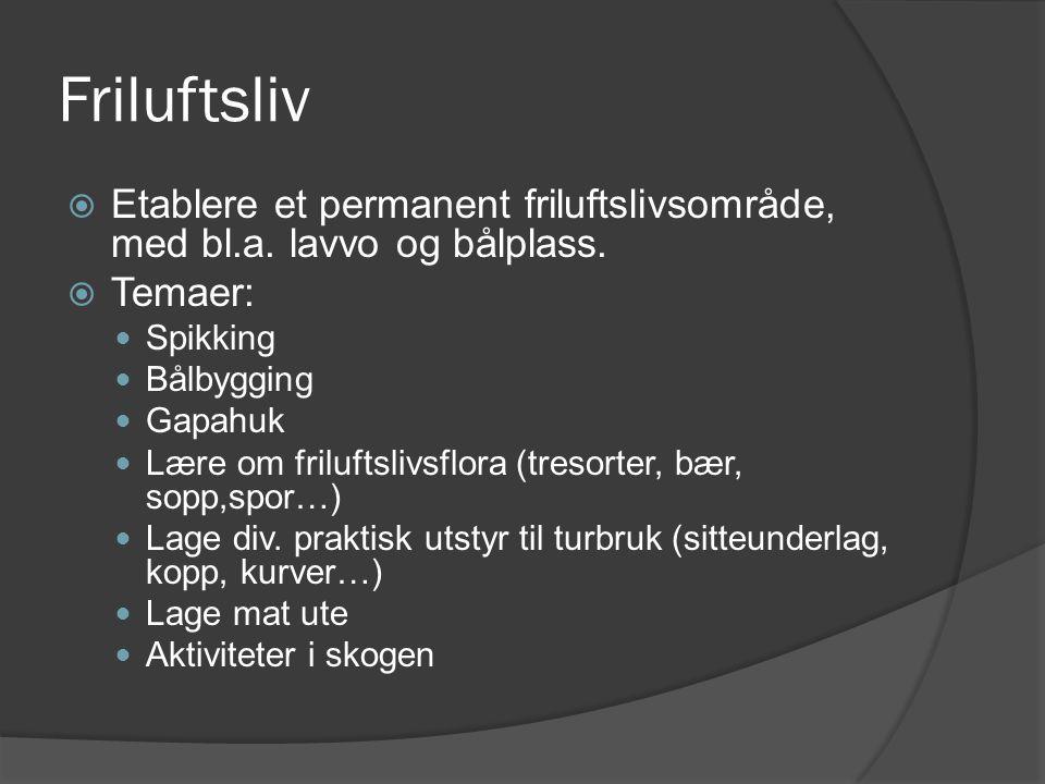 Friluftsliv Etablere et permanent friluftslivsområde, med bl.a. lavvo og bålplass. Temaer: Spikking.