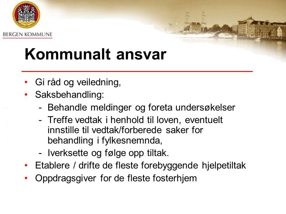 Kommunalt ansvar Gi råd og veiledning, Saksbehandling:
