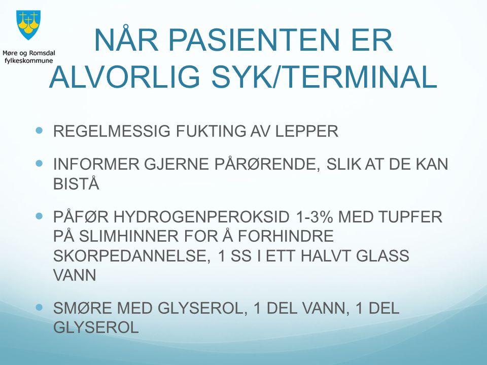 NÅR PASIENTEN ER ALVORLIG SYK/TERMINAL
