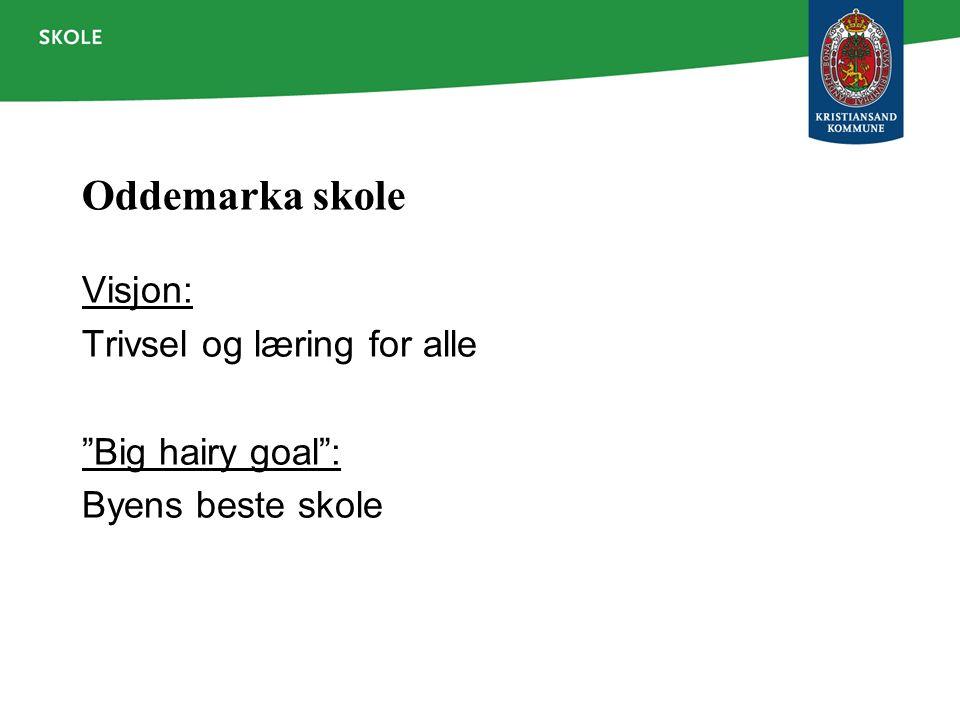 Oddemarka skole Visjon: Trivsel og læring for alle Big hairy goal :