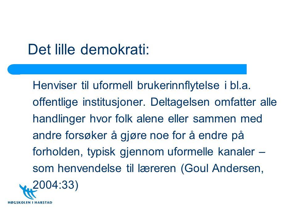 Det lille demokrati: Henviser til uformell brukerinnflytelse i bl.a.