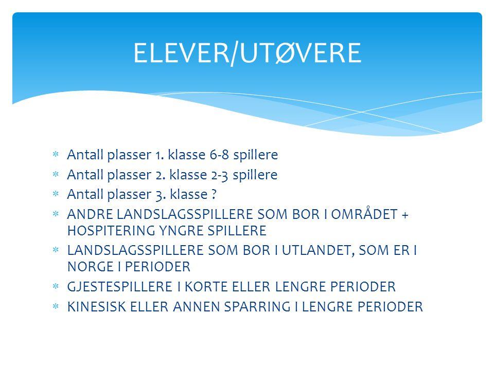 ELEVER/UTØVERE Antall plasser 1. klasse 6-8 spillere