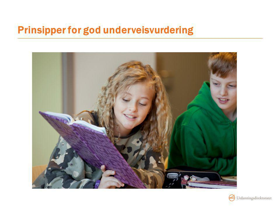 Prinsipper for god underveisvurdering