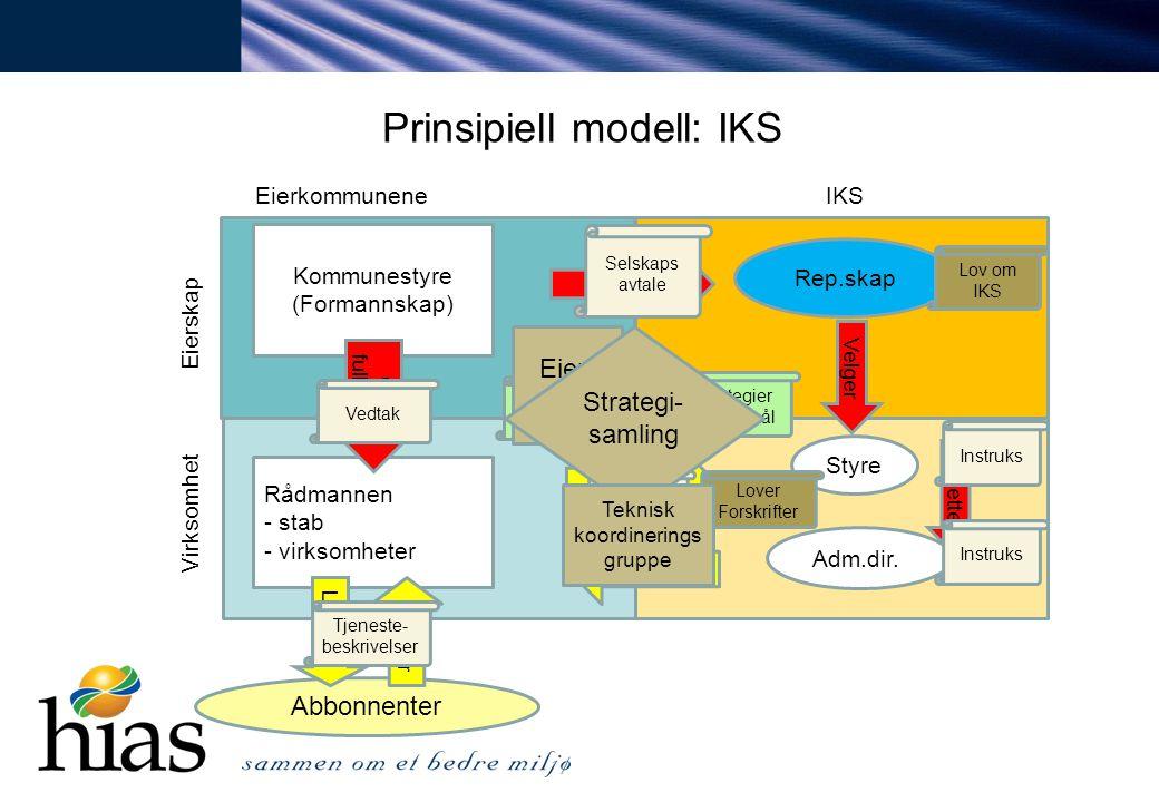Prinsipiell modell: IKS