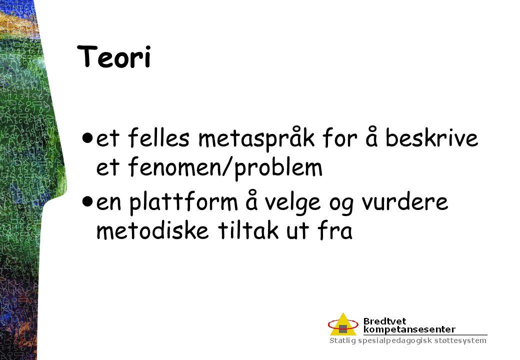 Teori et felles metaspråk for å beskrive et fenomen/problem