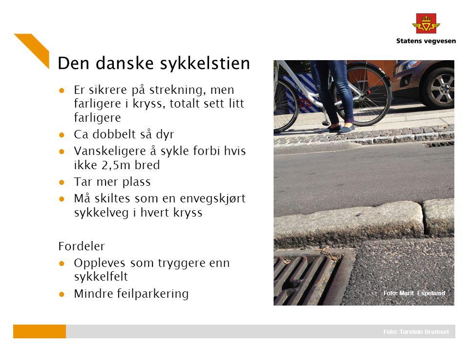 Den danske sykkelstien