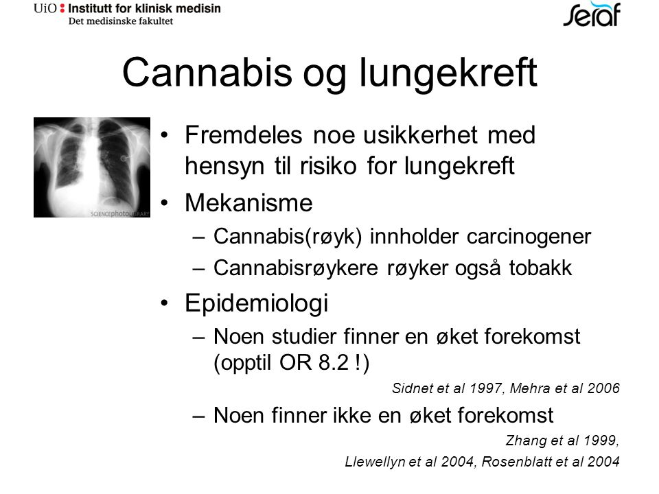 Cannabis og lungekreft