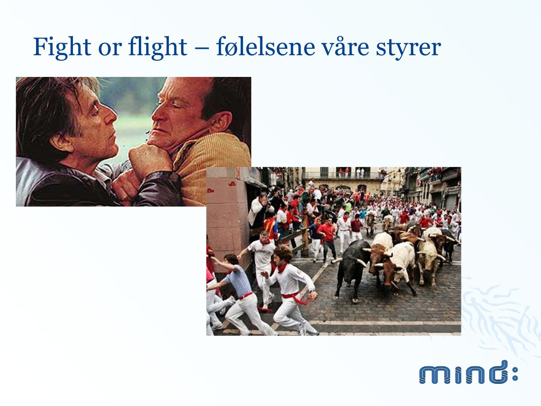Fight or flight – følelsene våre styrer