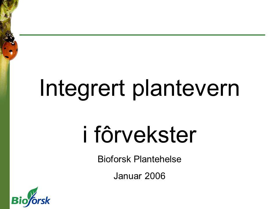 i fôrvekster Bioforsk Plantehelse Januar 2006