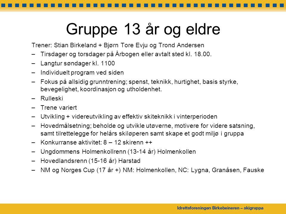 Gruppe 13 år og eldre Trener: Stian Birkeland + Bjørn Tore Evju og Trond Andersen. Tirsdager og torsdager på Årbogen eller avtalt sted kl. 18.00.