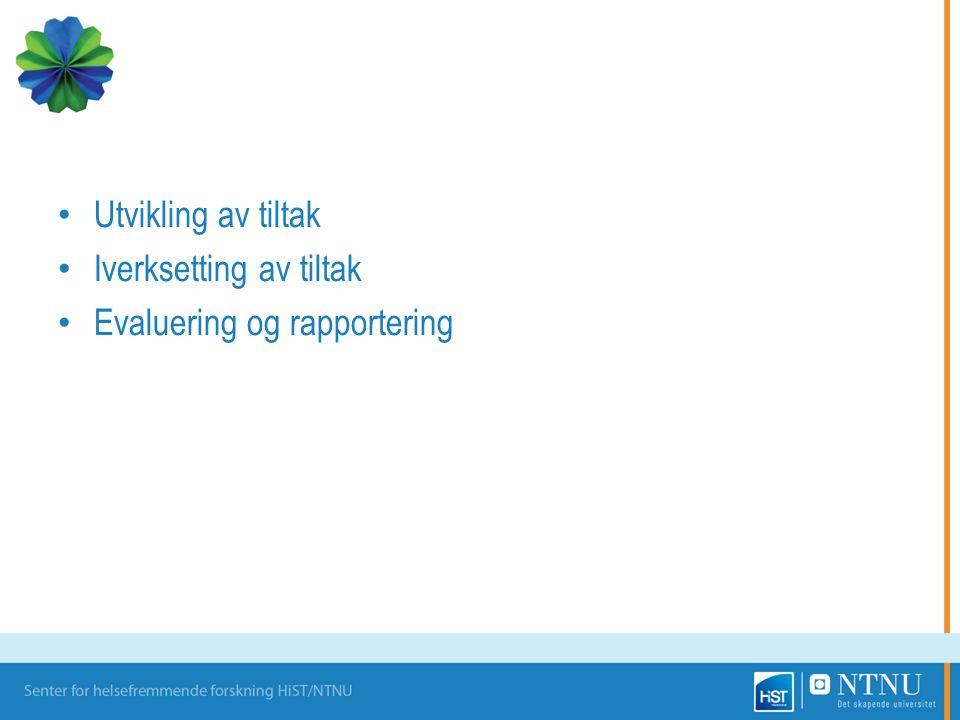 Iverksetting av tiltak Evaluering og rapportering