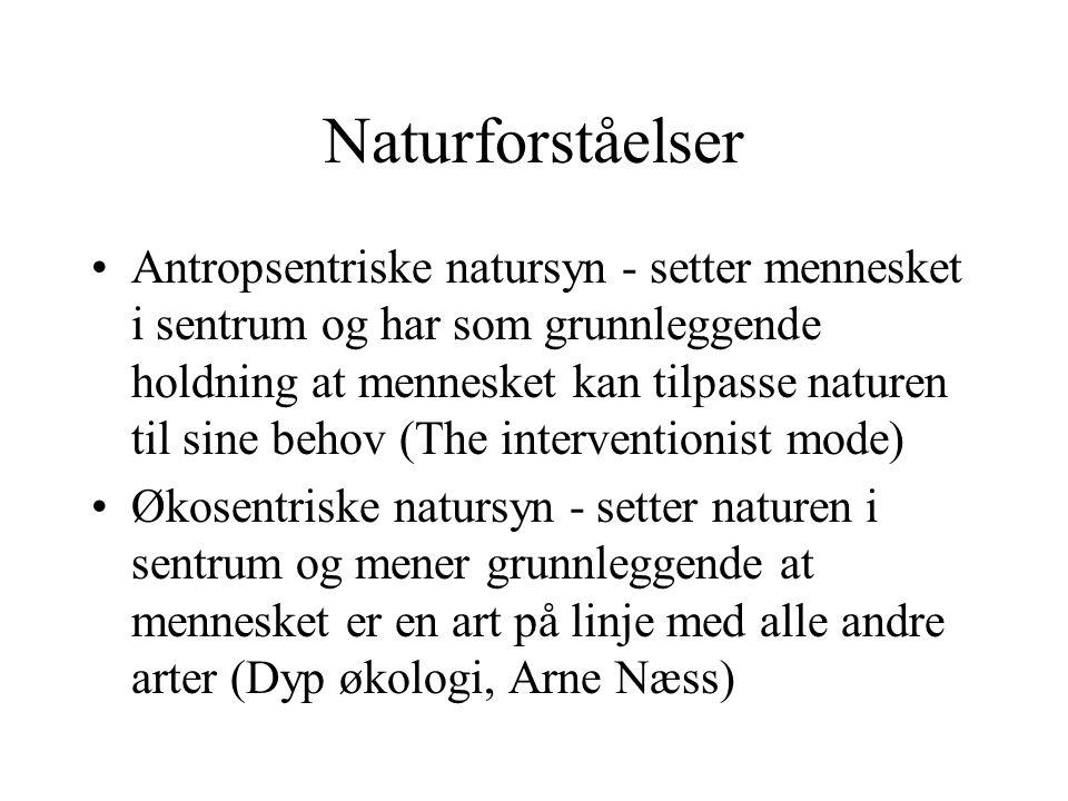Naturforståelser
