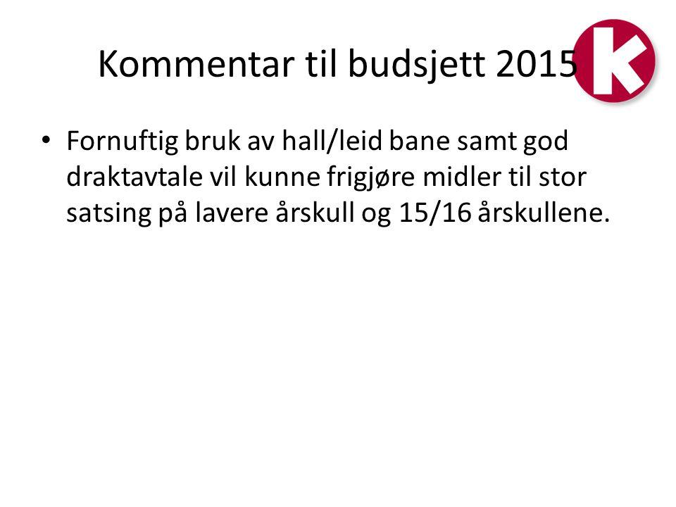 Kommentar til budsjett 2015
