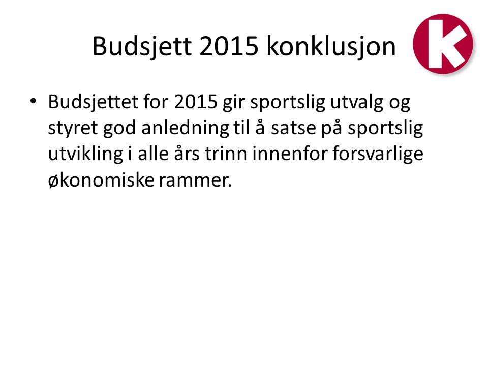Budsjett 2015 konklusjon