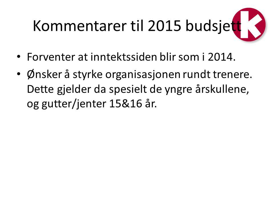 Kommentarer til 2015 budsjett