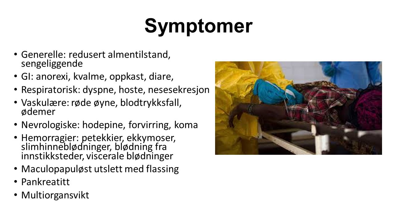 Symptomer Generelle: redusert almentilstand, sengeliggende
