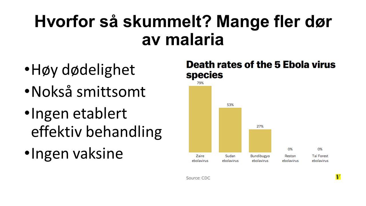 Hvorfor så skummelt Mange fler dør av malaria