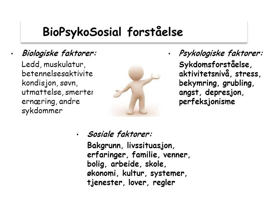 BioPsykoSosial forståelse
