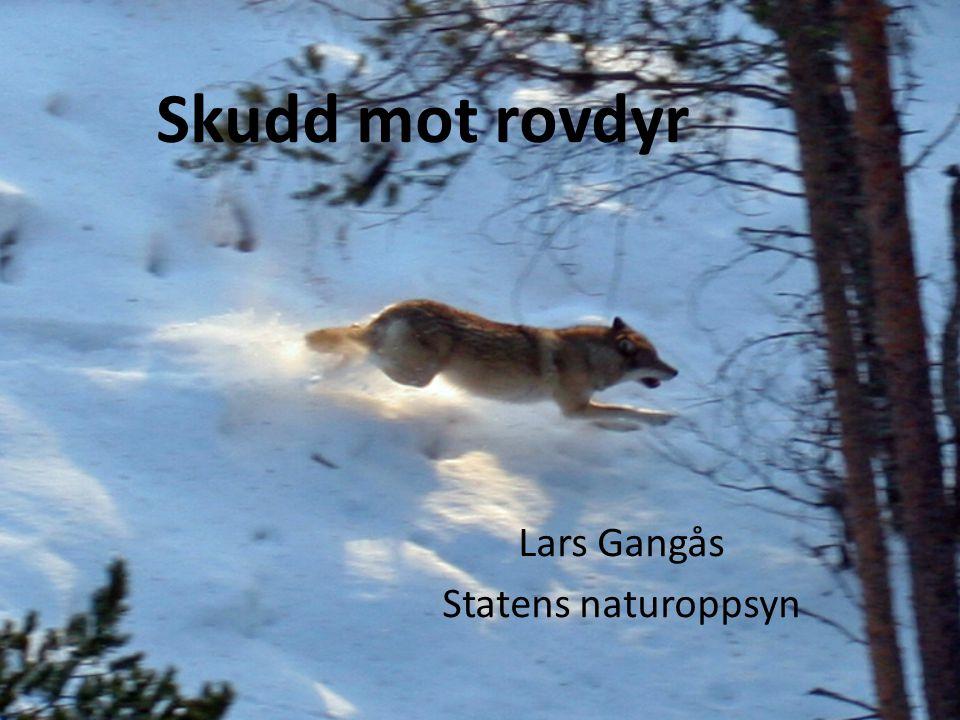 Lars Gangås Statens naturoppsyn
