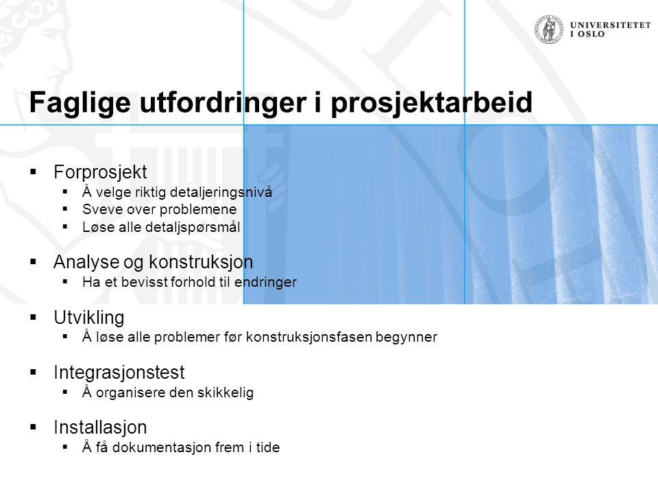 Faglige utfordringer i prosjektarbeid
