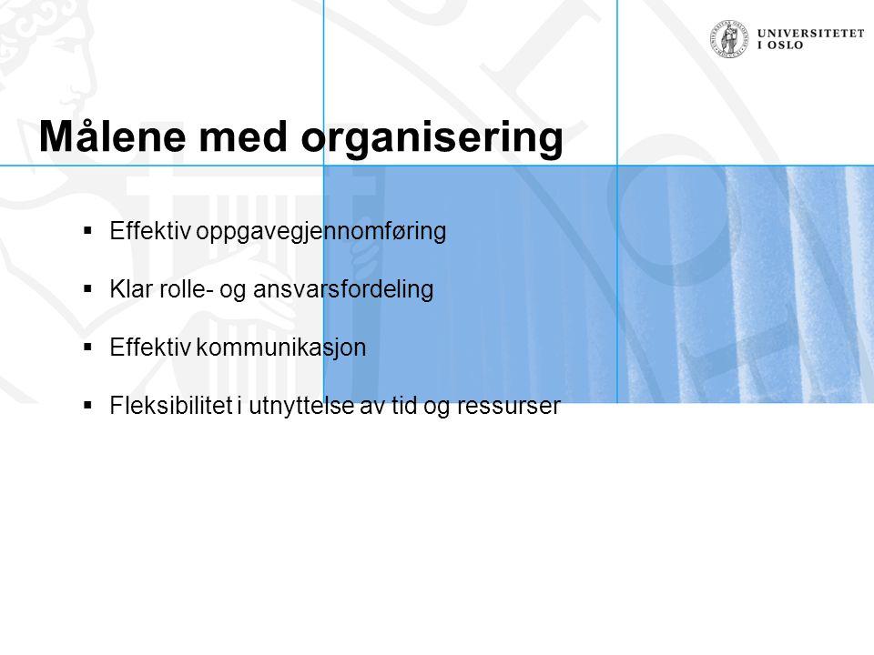 Målene med organisering