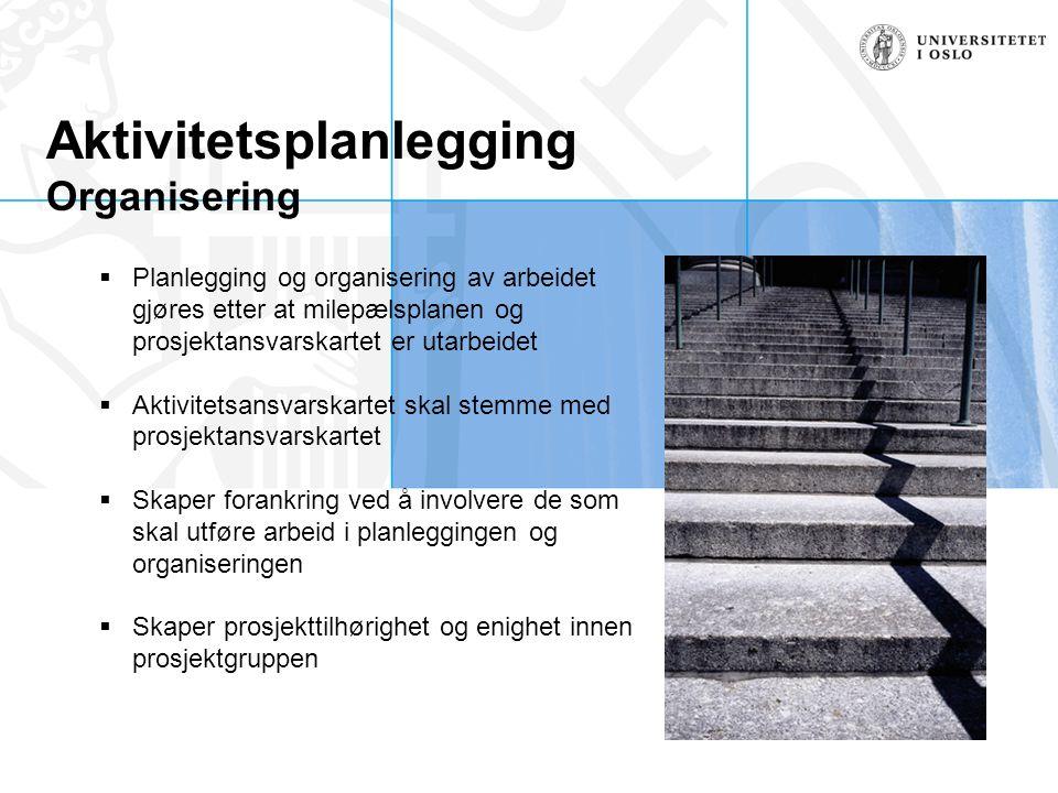 Aktivitetsplanlegging Organisering