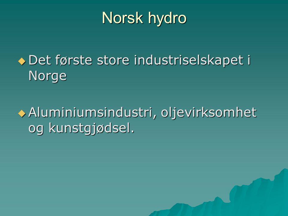 Norsk hydro Det første store industriselskapet i Norge