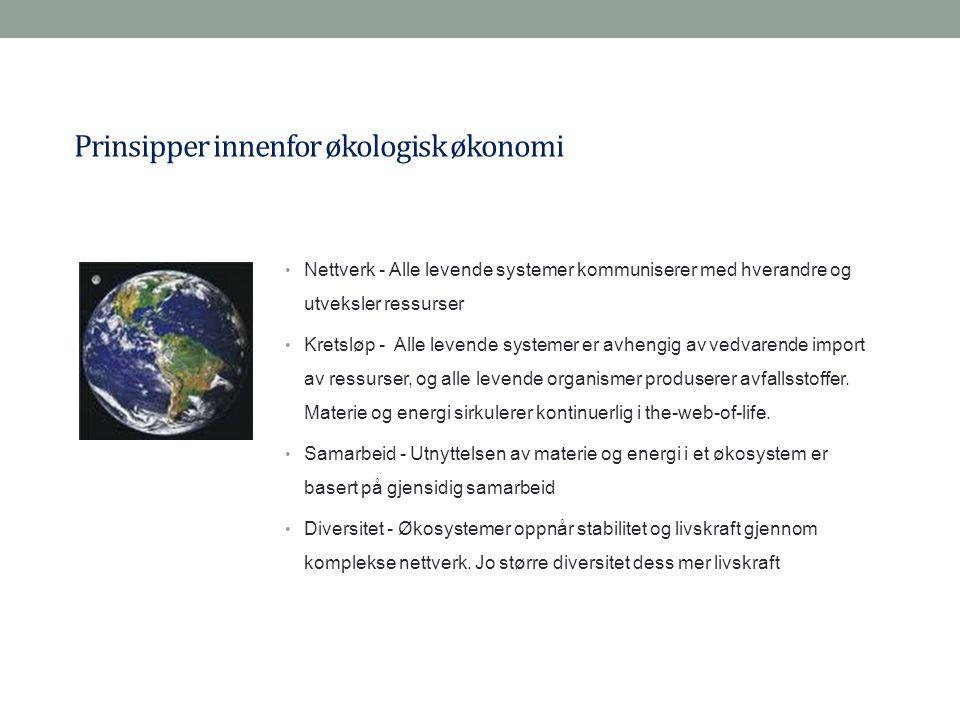 Prinsipper innenfor økologisk økonomi