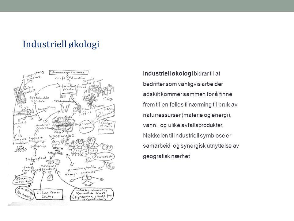 Industriell økologi