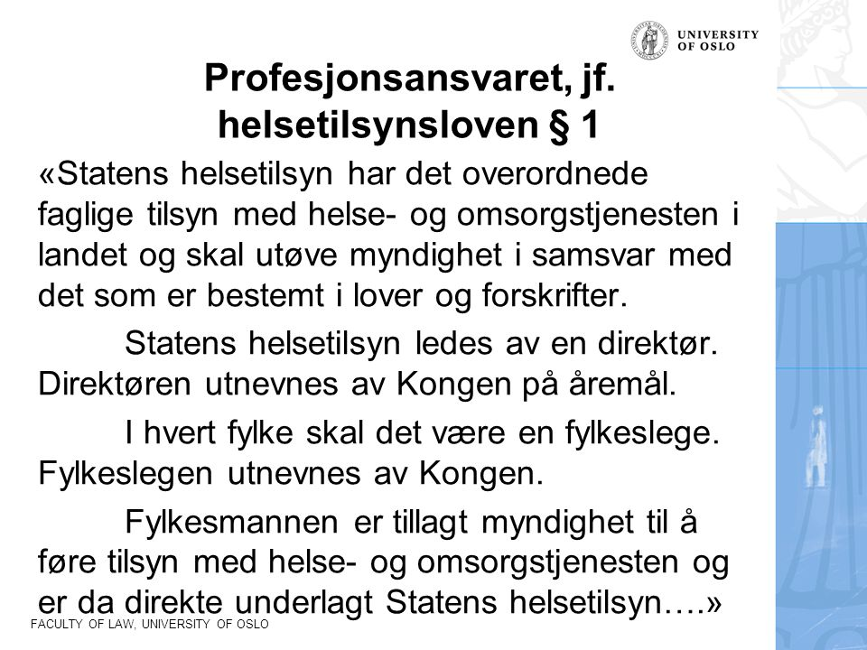 Profesjonsansvaret, jf. helsetilsynsloven § 1
