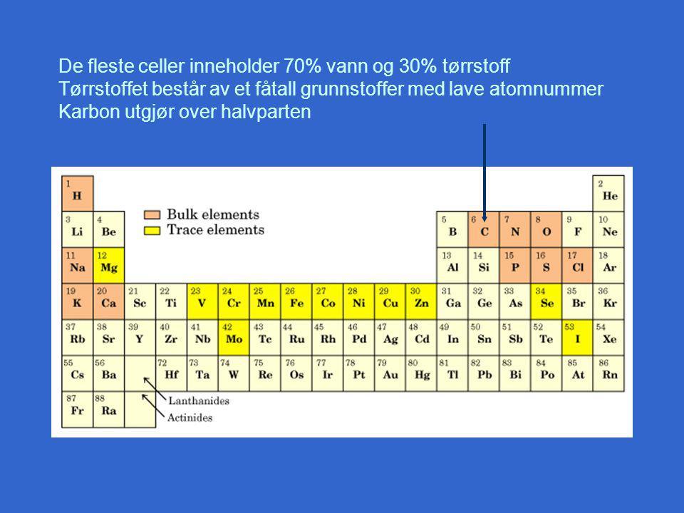 De fleste celler inneholder 70% vann og 30% tørrstoff Tørrstoffet består av et fåtall grunnstoffer med lave atomnummer Karbon utgjør over halvparten