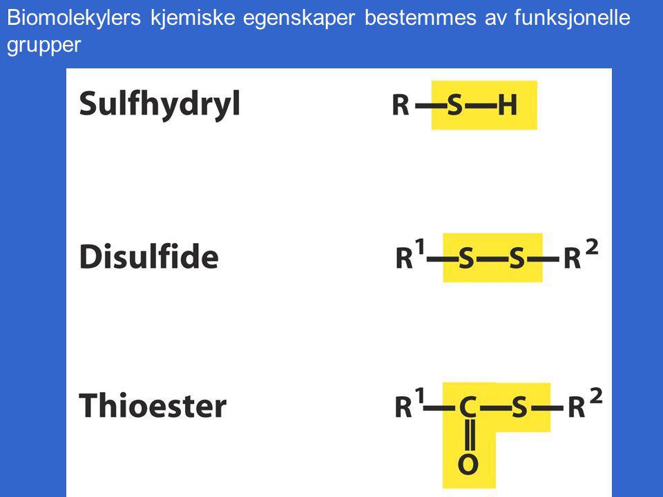 Biomolekylers kjemiske egenskaper bestemmes av funksjonelle grupper