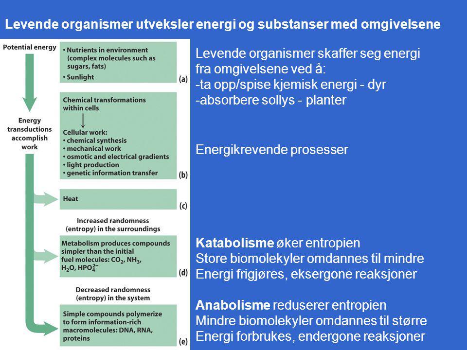 Levende organismer utveksler energi og substanser med omgivelsene