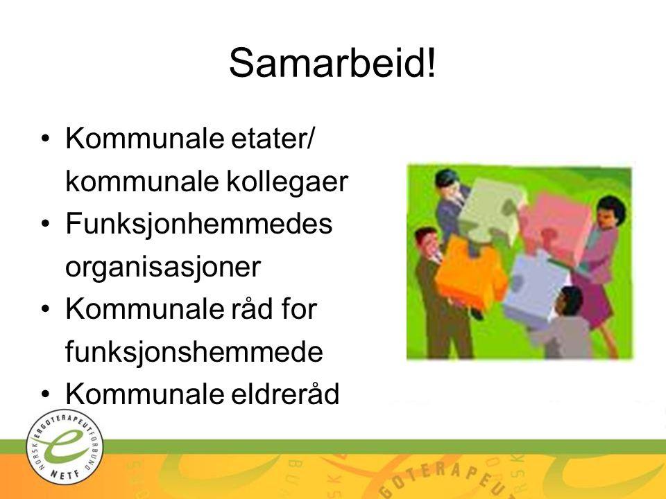 Samarbeid! Kommunale etater/ kommunale kollegaer Funksjonhemmedes