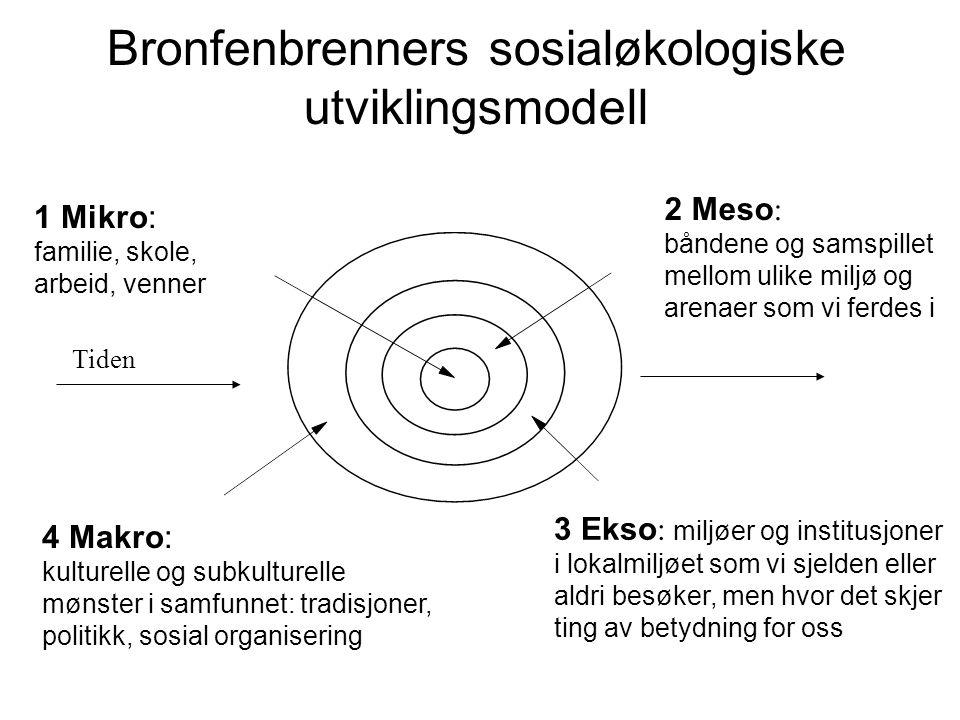 Bronfenbrenners sosialøkologiske utviklingsmodell
