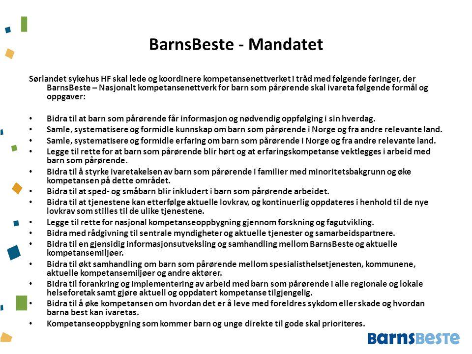 BarnsBeste - Mandatet