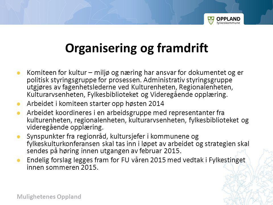 Organisering og framdrift