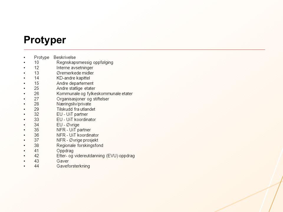 Protyper Protype Beskrivelse 10 Regnskapsmessig oppfølging