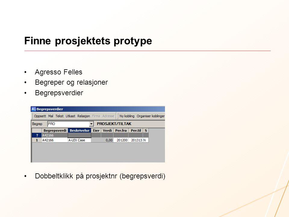 Finne prosjektets protype