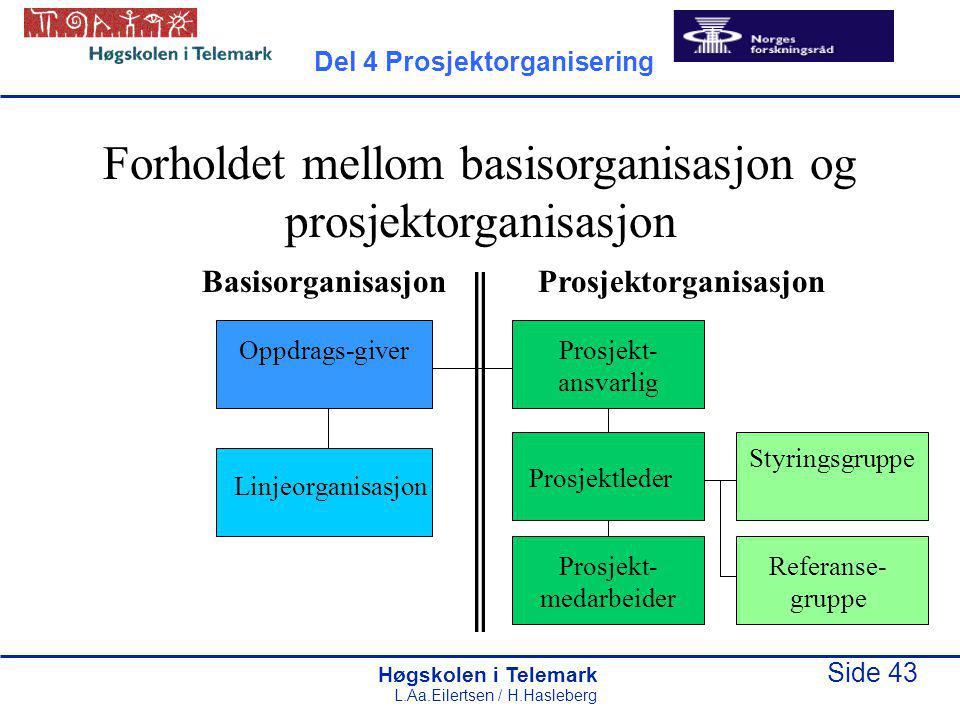 Forholdet mellom basisorganisasjon og prosjektorganisasjon