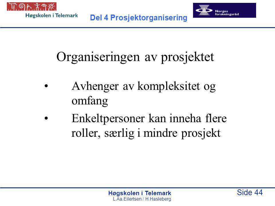 Organiseringen av prosjektet