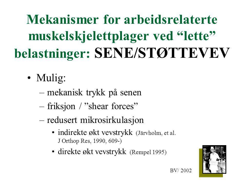 Mekanismer for arbeidsrelaterte muskelskjelettplager ved lette belastninger: SENE/STØTTEVEV