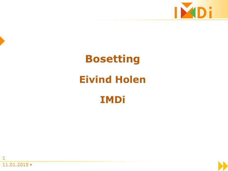 Bosetting Eivind Holen IMDi