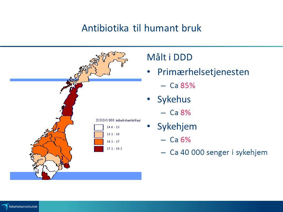 Antibiotika til humant bruk